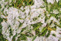 Weißer Schnee auf einem grünen Gras Lizenzfreie Stockbilder