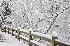 Weißer Schnee auf waldigem Zaun Stockbilder