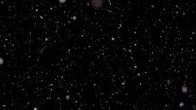 Weißer Schnee, der unten in die Nacht fällt stock footage