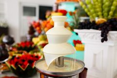 Weißer Schokoladen-Brunnen und Früchte zum Nachtisch an der Hochzeitstafel Lizenzfreies Stockbild