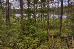 Weißer See-provinzieller Park ist ein isloated Park, der nahe Mobert und White River gelegen ist stockbild