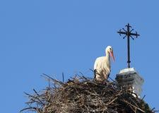 Weißer Storch-Verschachtelung auf einer Kirche in Chiclana de la Frontera, Spai stockbild