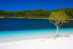 Weißer Strand mit Türkiswasser Stockbild