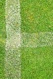 Weißer Streifen auf dem grünen Gras Stockfotografie