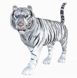 Weißer Tiger vektor abbildung