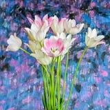 Weißer Tulpenblumenstrauß auf einem undeutlichen Hintergrund Lizenzfreies Stockbild