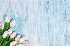 Weißer Tulpenblumenstrauß auf hellblauem Hintergrund Kopieren Sie Raum, Draufsicht Geburtstag, Mutter-Tag, Valentine Day-Konzept Lizenzfreie Stockfotos