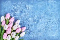 Weißer und rosa Tulpenblumenstrauß auf blauem Hintergrund Kopieren Sie Raum, Draufsicht Geburtstag, Mutter-Tag, Valentine Day Lizenzfreies Stockfoto