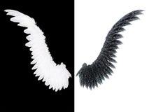 Weißer und schwarzer Flügel stockfoto
