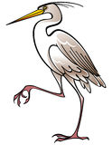 Weißer Vogel Reiher