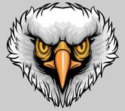 Weißer vorangegangener Adler Stockfotografie