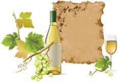 Weißer Wein lizenzfreie abbildung