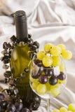 Weißer Wein und Trauben Stockfoto