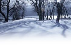 Weißer Wintermorgen im Park Stockbild