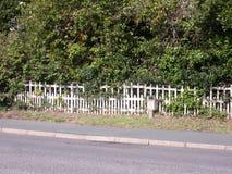 Weißer Zaun über der Straße mit Bäumen hinten Stockbilder