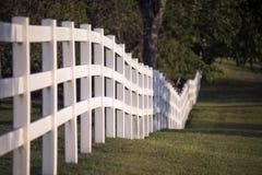 Weißer Zaun auf dem Gebiet stockbilder