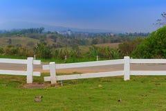 Weißer Zaun auf grünem Rasen Stockfoto