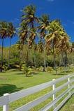 Weißer Zaun des privaten Gartenwohnsitzes auf Bequia Stockbilder