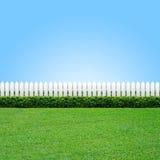 Weißer Zaun und grünes Gras Stockbild