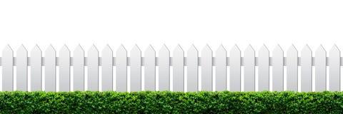 Weißer Zaun und Hecke Stockbilder