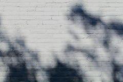 Weißer Ziegelstein mit Schatten Lizenzfreie Stockbilder