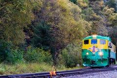 Weißer Zug Abreiseskagway Alaska des Durchlaufs 95 stockfotos