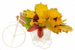 Weißes altes, Weinlesefahrrad mit dem Korb, der mit Herbst gefüllt wurde, färbte die Blätter, lokalisiert Stockbild