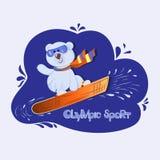 Weißes Bärenjunges auf Snowboard stock abbildung