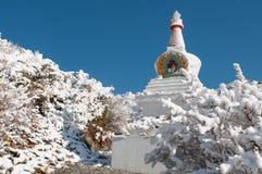 Weißes Bhuddist-stupa im Schnee im Himalaja Stockbilder