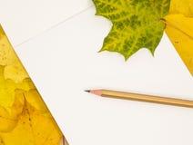 Weißes Blatt und Bleistift auf Ahornblättern Lizenzfreie Stockfotos