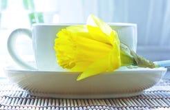 Weißes Cup mit gelber Blume stockbilder