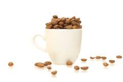 Weißes Cup mit Kaffeebohnen Lizenzfreies Stockfoto