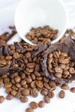 Weißes Cup mit Kaffeebohnen Stockfotos