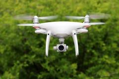 Weißes Drohnenfliegen im Wald Stockfotografie