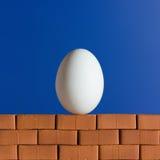 Weißes Ei auf der roten Backsteinmauer Lizenzfreie Stockbilder