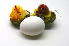 Weißes Ei mit dem Küken Lizenzfreies Stockbild