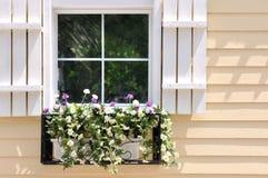 Weißes Fenstermuster auf Architektur der hellen Farbe Stockbild