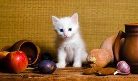 Weißes flaumiges Kätzchen des Herbststilllebens, das auf einem Holztisch sitzt stockbilder