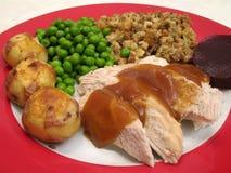 Weißes Fleisch die Türkei u. Zutaten lizenzfreie stockbilder