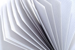 Weißes Grasen Stockfoto
