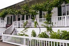 Weißes Haus mit Dachboden mit Trauben und Bänke Stockfoto