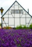 Weißes Haus und purpurrote Blumen Stockfotos