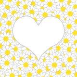 Weißes Herz auf dem Hintergrund vieler Gänseblümchen Stockfoto