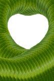 Weißes Herz mit grünen Blättern der Kunst Stockfotos