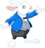 Weißes Kaninchen Lizenzfreie Stockfotografie