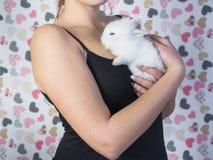 Weißes Kaninchen in den Frauenhänden Stockbild