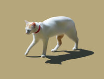 Weißes Katzengehen Stock Abbildung