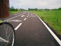 Weißes Kennzeichen des Fahrrades und des weißen Pfeiles, die eine Möglichkeit auf Asphaltweg zeigen Stockfoto