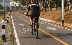 Weißes Kennzeichen des Fahrrades und des weißen Pfeiles, die eine Möglichkeit auf Asphaltweg zeigen Lizenzfreie Stockfotografie