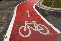 Weißes Kennzeichen des Fahrrades und des weißen Pfeiles, die eine Möglichkeit auf Asphaltweg zeigen Lizenzfreie Stockfotos